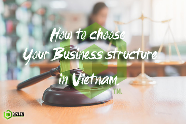 Picture of how to choose your Business structure in vietnam